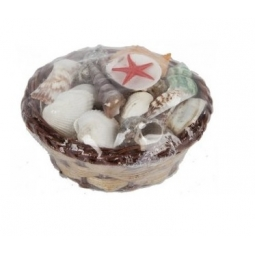 Assorted Sea Shell Collection In Mini Wicker Basket Bathroom Accessory 11cm