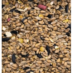 Wild Bird Seed Mix 1KG Bag Approx Attracts Finches Sparrows Blue Tits