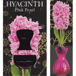 Pink Hyacinth Glass Vase